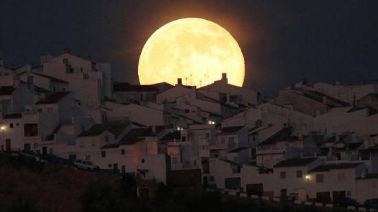 月亮出来亮汪汪是什么歌