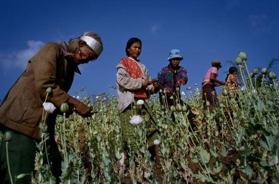 2003年1月,大旱中的缅甸境内某佤族村落。