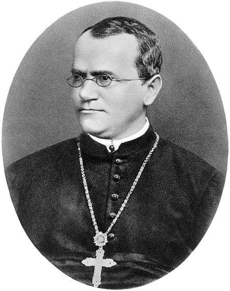 孟德尔(Johann Mendel,1822―1884),以数学分析了遗传现象、发现了遗传规律、开创了遗传学。