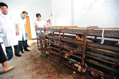 2010年9月初,王大峰被家人及当地警方锁在笼中,笼外是前来查看其病情的北京武警三院神经外科的医生。