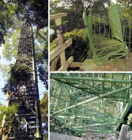 亚马逊丛林的观鸟塔