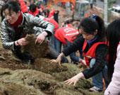 青年志愿者给土坡披上草皮