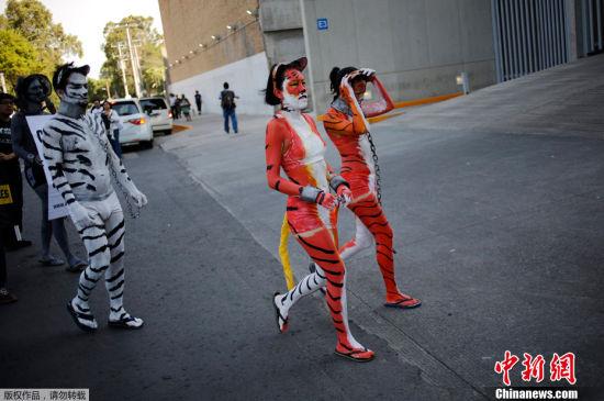 组图:美女化身猛兽抗议马戏团虐待动物