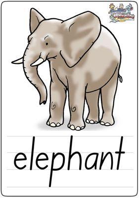 """英语学习卡片""""elephant"""""""