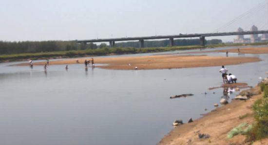 在男孩溺水地点附近,仍有人在江中游玩 新文化记者 王国彬 摄