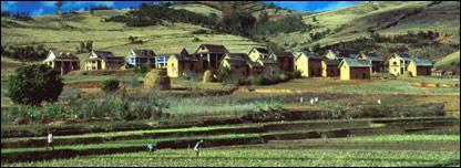 Madagascar farmland