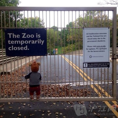 动物园  栅栏 喂食