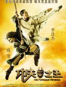 2008年《功夫之王》
