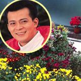 黄日华:买鲜花布置