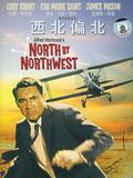 1995年《西北偏北》