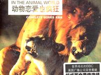 《动物恋爱也疯狂》