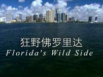 《狂野佛罗里达》