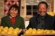 陕北高原上的黄馍馍