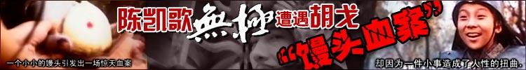 陈凯歌《无极》遭遇胡戈馒头血案