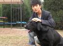 许诺与爱犬