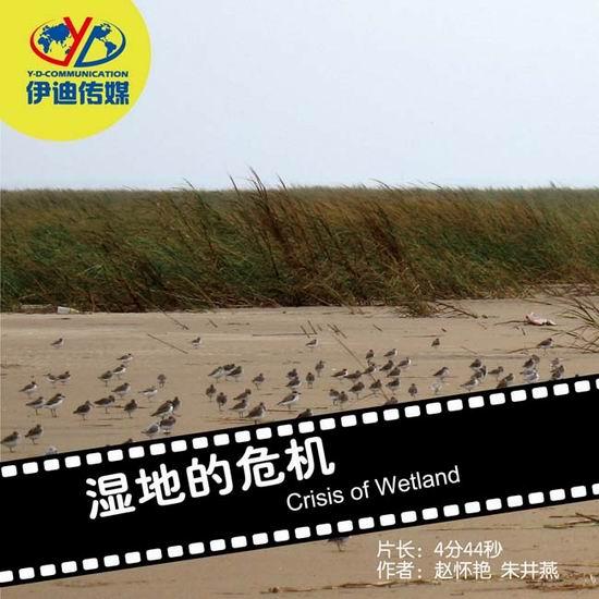 动物与自然电影周展映电影:《湿地的危机》