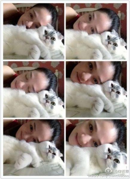 陈乔恩与萌猫可爱六连拍