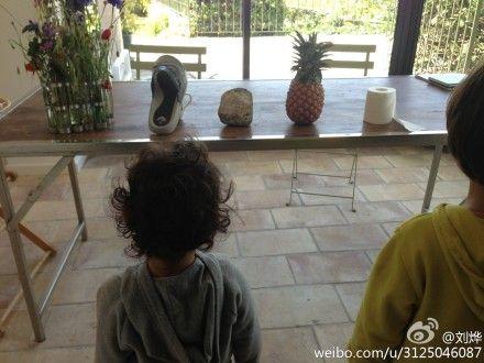 刘烨让孩子们在桌上的物品中找出食物= =