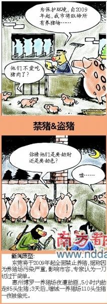 禁猪&盗猪
