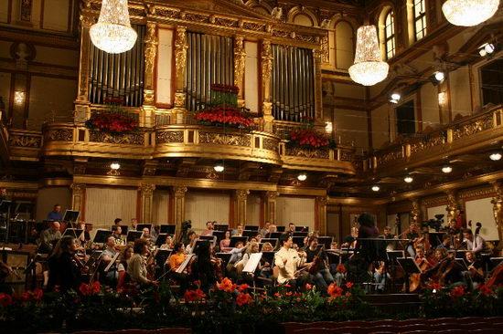 邓建栋维也纳金色大厅二胡独奏音乐会央视转播