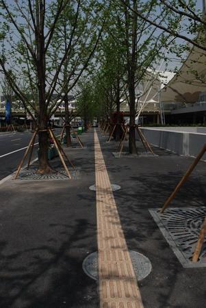 中国馆西侧的人行道