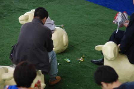 荷兰馆的羊群草坪