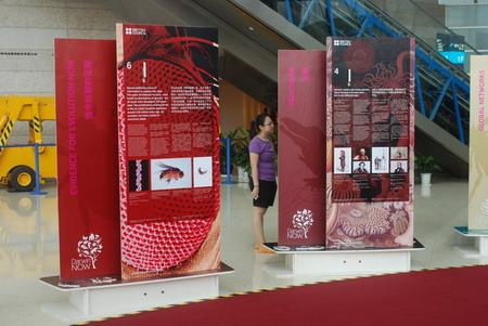 """2009年夏,上海科技馆""""永远的达尔文""""展览"""