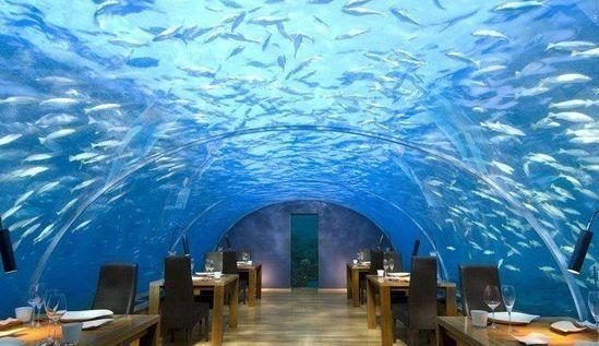 马尔代夫,海底餐厅(Ithaa Undersea Restaurant)