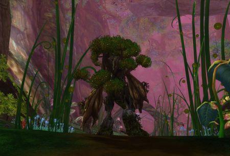 永恒之塔2龙界游记第四回 帕斯卡森林