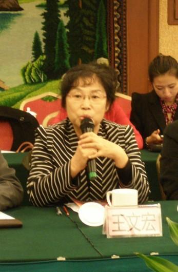 王文宏:网游产业价值与文化价值都应重视