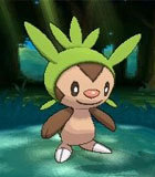 Chespin(针栗鼠)