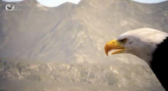 最终幻想15生态演示视频