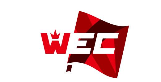 wec2014 世界电子竞技冠军赛正式启动