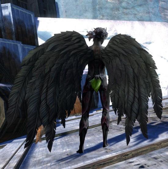 http://dulfy.net/wp-content/uploads/2015/03/gw2-black-feather-wings-backpack-sylvari-3.jpg