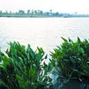 白云湖实景