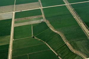 土地发展潜力