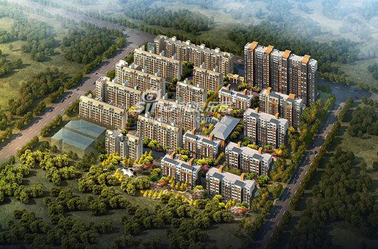 顺平县城东规划图