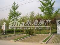北京华侨城 实景图 园林建设实景1