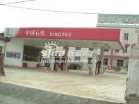新龙城 实景图 周边加油站