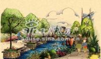 新龙城 实景图 园林