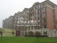 珠江御景 实景图 18号楼