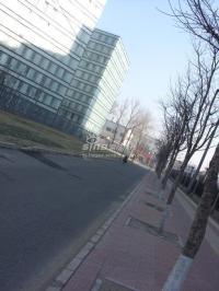 上第MOMA 实景图 周边道路实景图