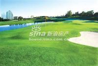 万象新天 实景图 高尔夫球场