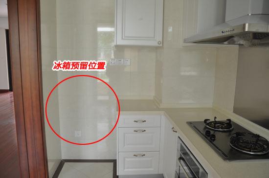 请问大家的冰箱是放厨房还是客厅?-电冰箱放在