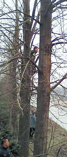 在树上翘首以盼四代机的军迷