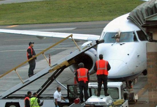随后该机立即返回起飞机场并在该机场安全降落