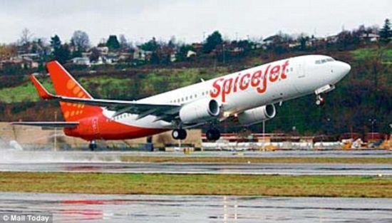 印度载百人客机起飞时撞上水牛无人员伤亡