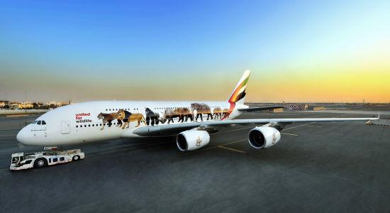 阿联酋航空涂有六种濒危野生动物喷绘的A380客机