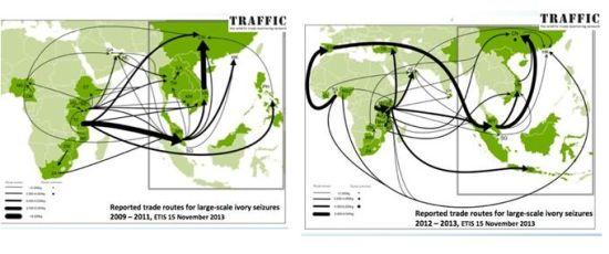 2009年-2011年和2012年-2013年全球大宗象牙走私路线图。(图片来源:TRAFFIC)