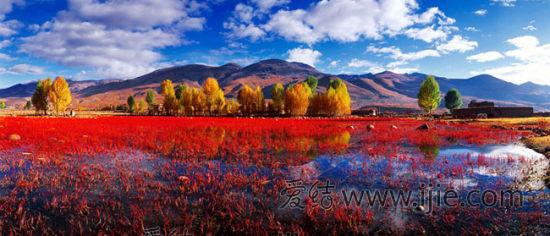10月是红草地最美的时候,河床的石头上生长的红色的苔藓物,再加上背景为黄色、红色的树林,形成了一幅美丽的油画。
